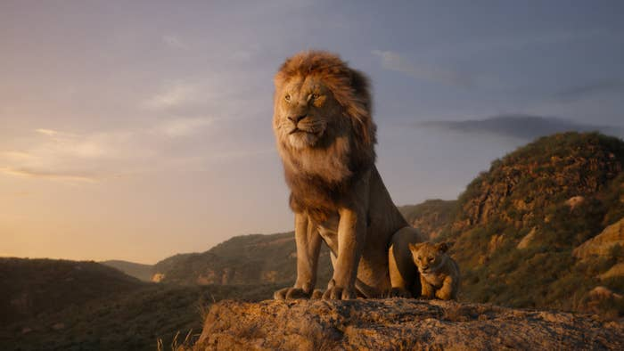 "These ""The Lion King"" Side-By-Sides Prove How Realistic The Animals Are"