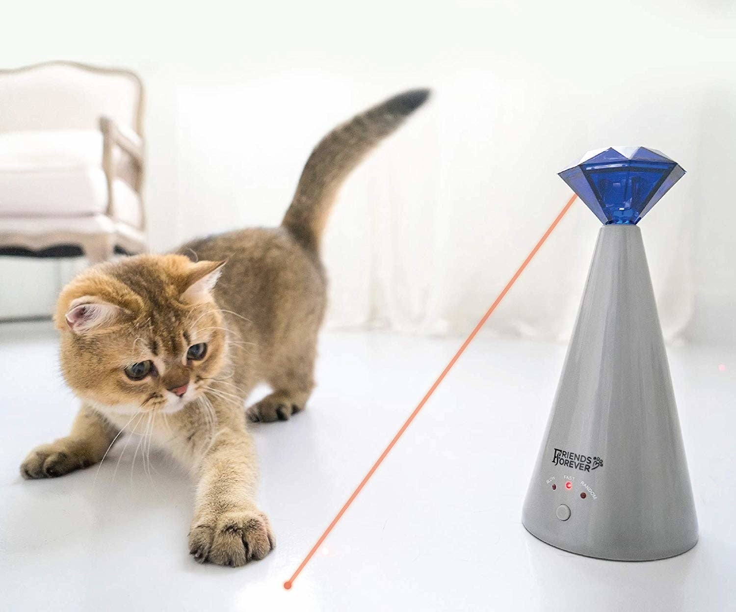 a cat pouncing on the laser coming from the toy