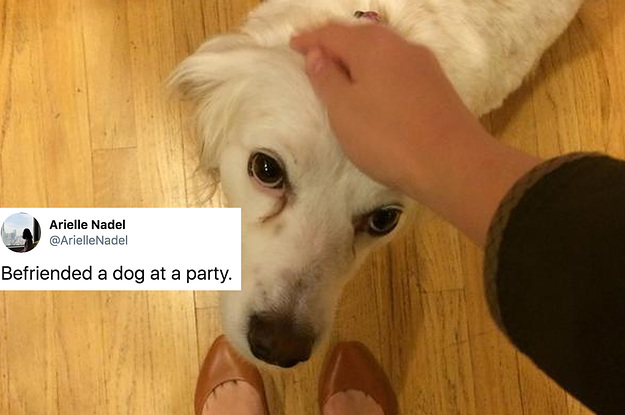 15 People Who Rightfully Hung Out With A ...