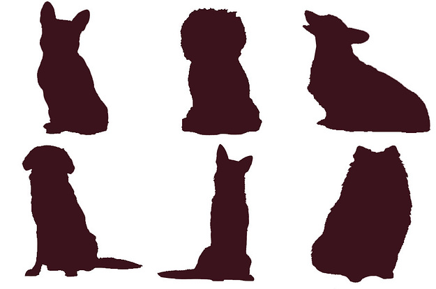 Can You Identify The Dog Breed Just By Their Silhouette?