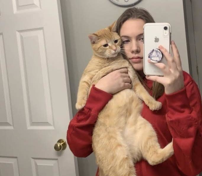 Cat Goes Viral on TikTok App
