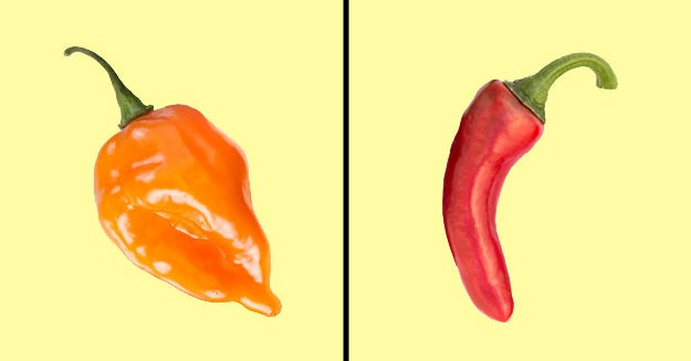 8 Of These Peppers Will Set Your Mouth On Fire — Can You Pick The One That Won't?