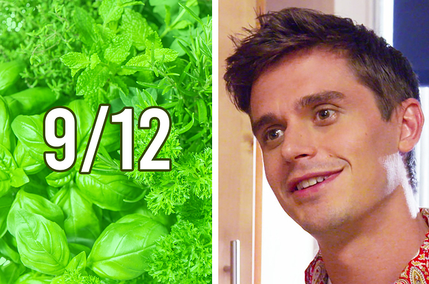 This Herb Quiz Has Only 12 Questions, And I Bet You Can't Get 9 Correct