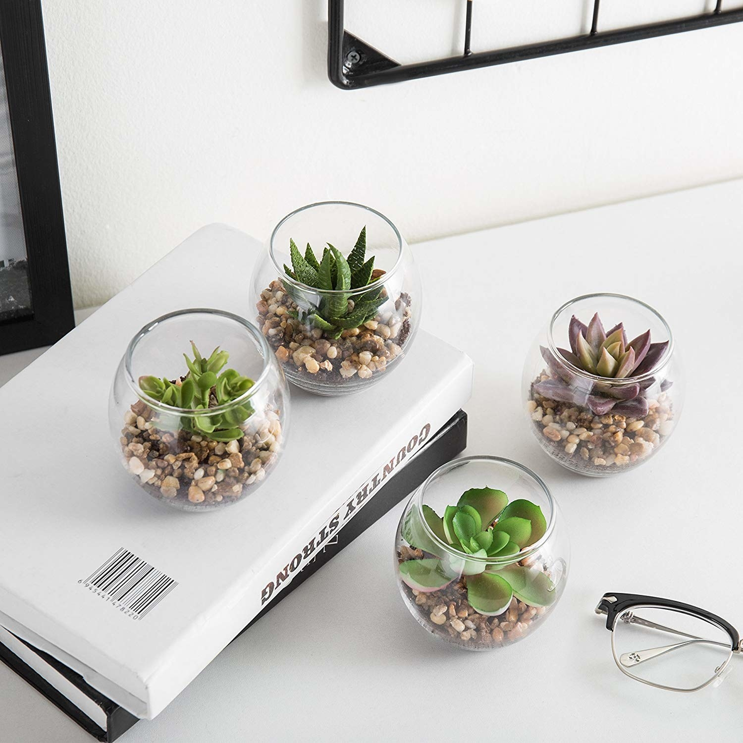 the four small succulents in round vases