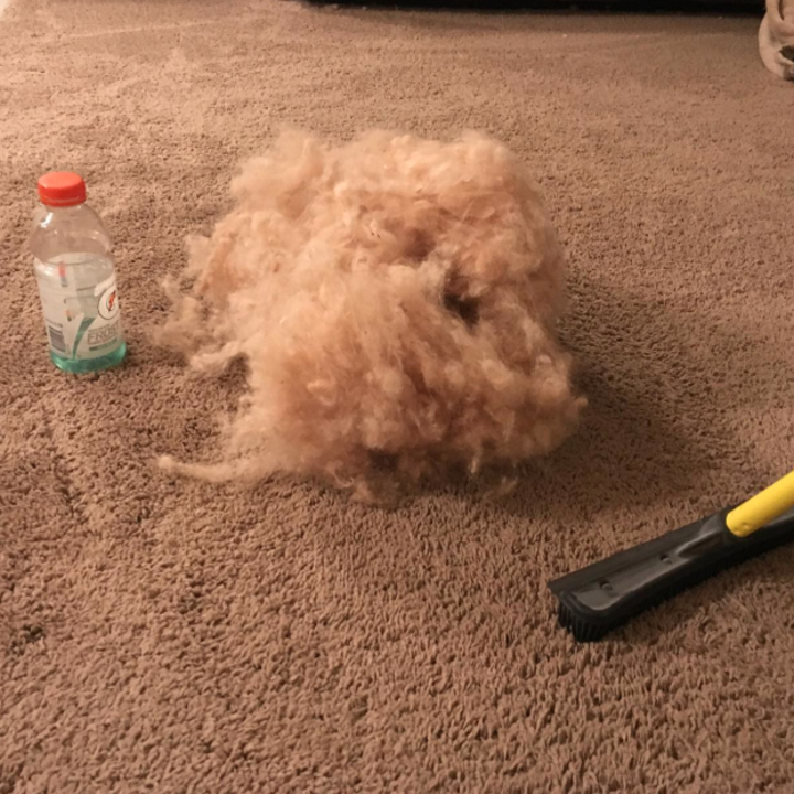 reviewer's carpet with rubber broom and large cloud-like pile of pet hair