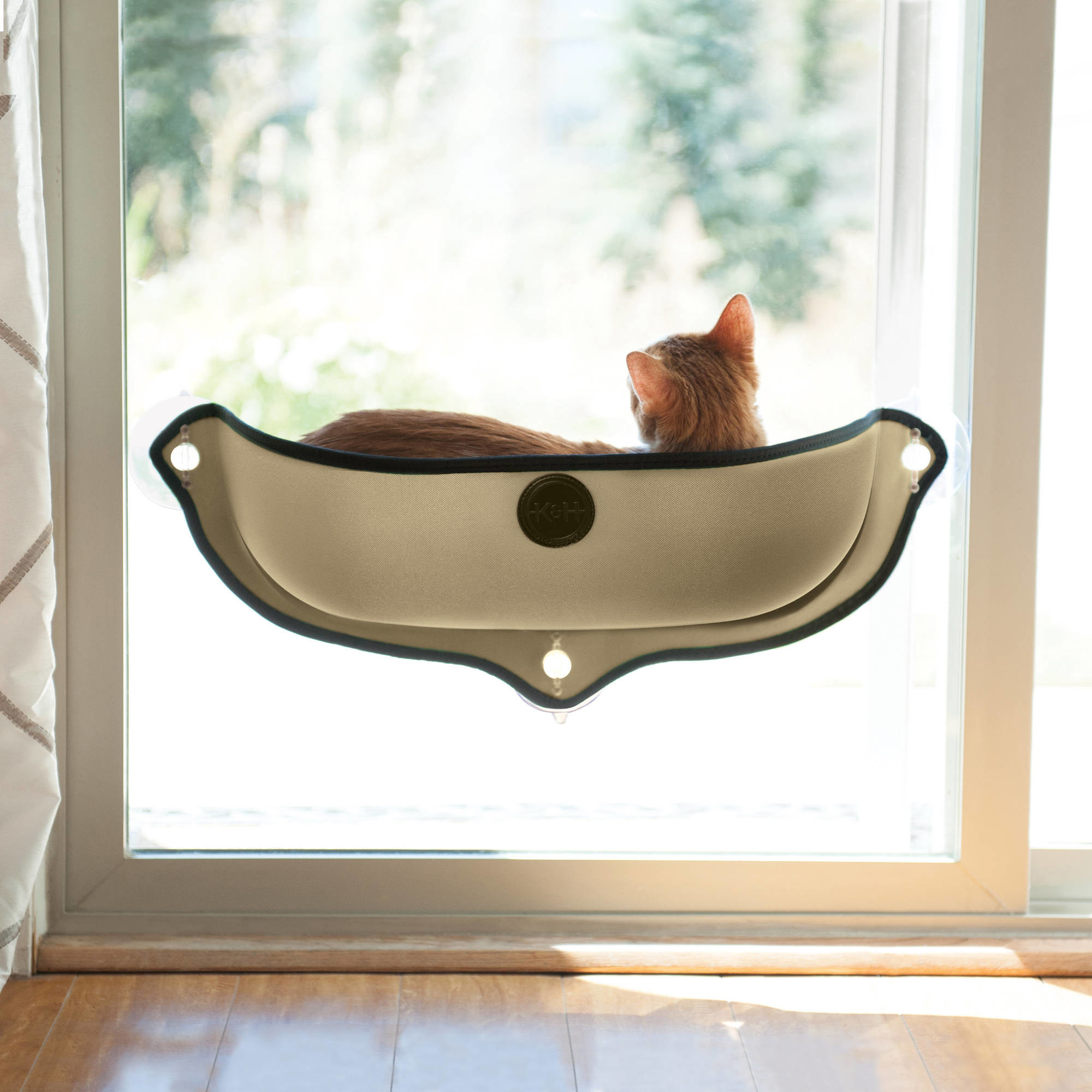 cat lounges in the rubbery stick on the window bed