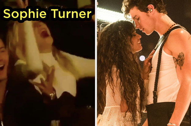 Here's How Taylor Swift, Sophie Turner, And Other Famous People Reacted To Shawn Mendes And Camila Cabello's Awkward Non-Kiss