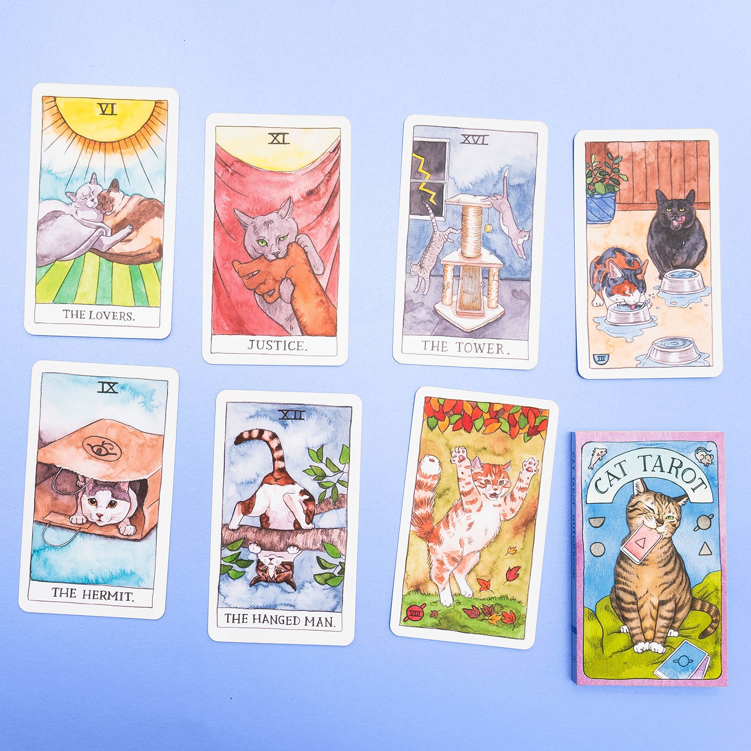 the cards with various cute cats on them