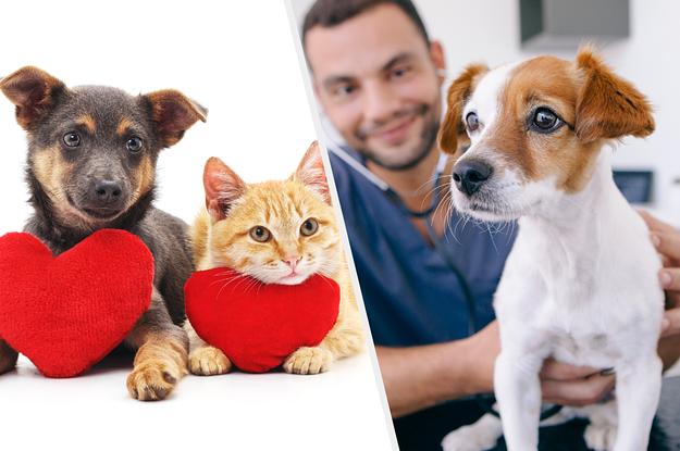33 Funny Pet Names That'll Make You Say