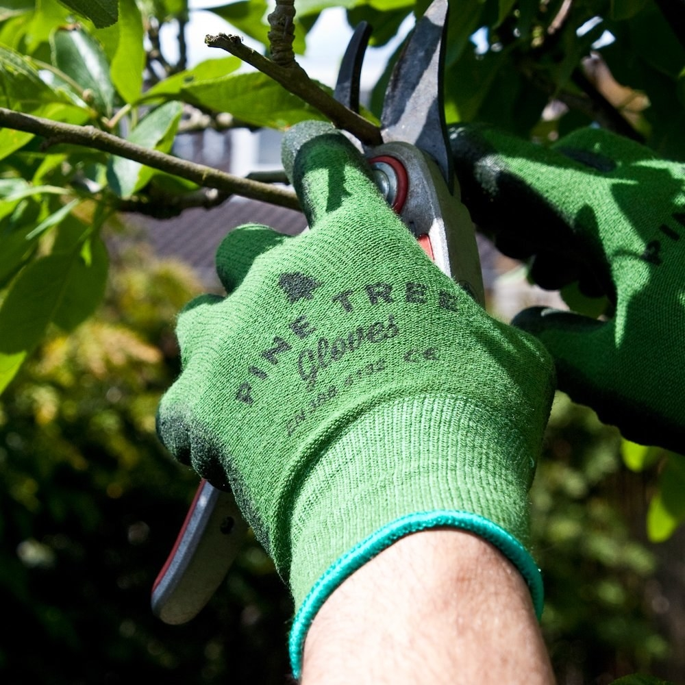 Reviewer's hand wearing the glove is shown trimming a tree