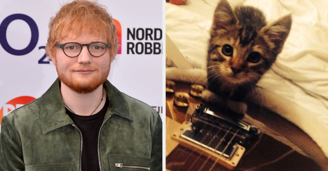 Ed Sheeran's Cat Was Killed And He Posted The Sweetest Photo That Will Split Your Heart In Two