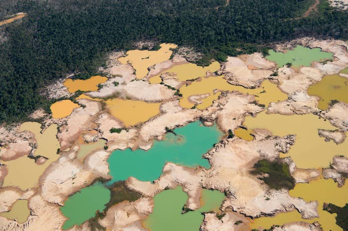 The Global Demand For Gold Is Destroying The Amazon Rainforest on amazon forest colombia, amazon forest ecuador map, amazon forest peru, amazon forest brazil map, amazon forest in south america, amazon forest on map, amazon forest world map,