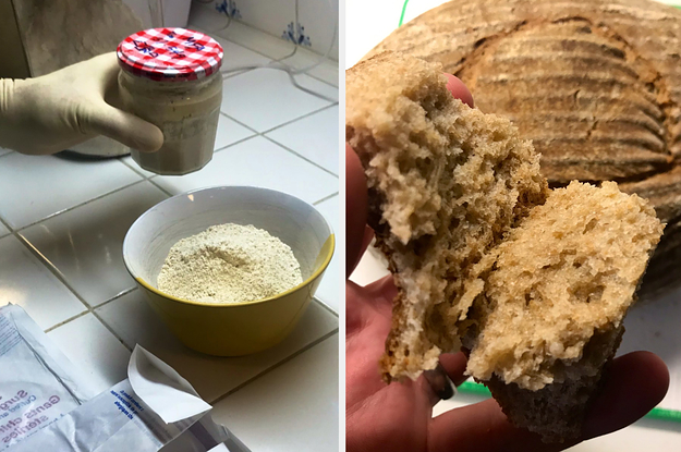 A Man Made Bread Using Ancient Egyptian Yeast And TBH I Want A Piece