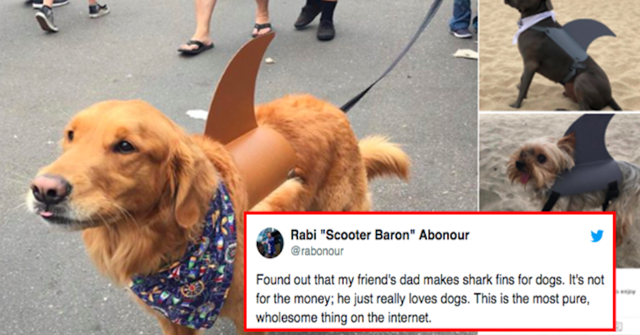 Just 17 Really Pure Parents Who Will Make Your Day 200% Better