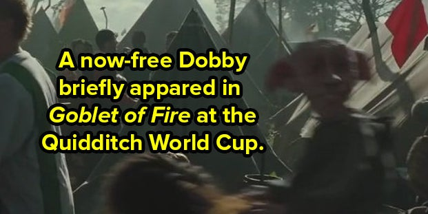 """31 Itsy-Bitsy Details You Probably Missed In """"Harry Potter"""""""