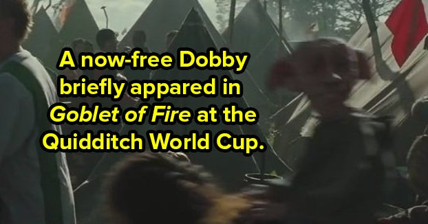 """31 Minuscule Details That Even The Purest Of Bloods Probably Missed In """"Harry Potter"""""""