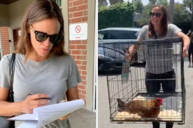 Jennifer Garner's Pet Chicken Died And She Documented The Experience In A Bonkers Video