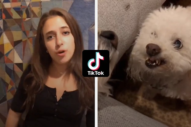 I Tried A Bunch Of TikTok Challenges And It Was Both Fun And Cringey