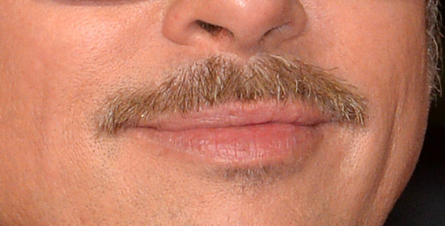 Can You Guess Which Celebrities These Mustaches Belong To?