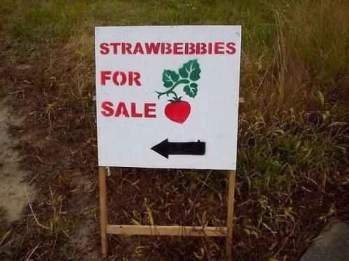 "Sign reading ""strawbebbies for sale"""