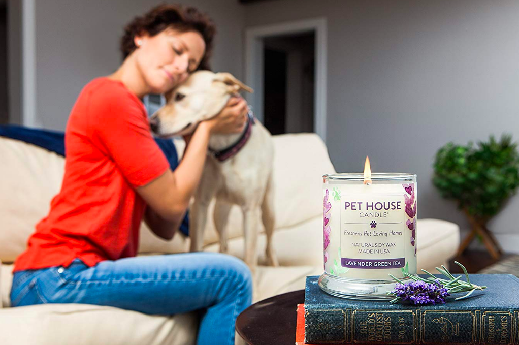 Person petting dog on sofa with candle on table