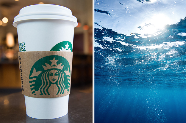 Order A Drink At Starbucks And We'll Guess Your Zodiac Element