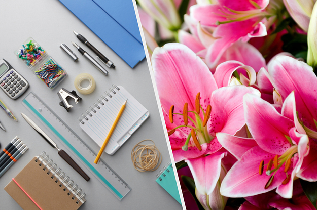 We'll Tell You Which Flower You Are Based On Your Stationary Preferences