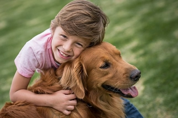 Top 10 Best Dogs Breeds For Your Kids : Cute Animals