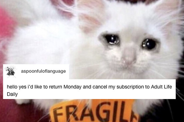 26 Tumblr Posts That'll Hit You Deep In Your Adult Soul