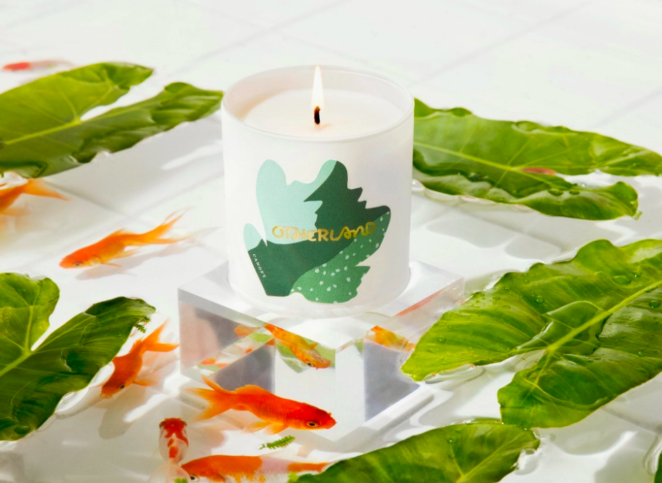 A candle surrounded by fish and leaves