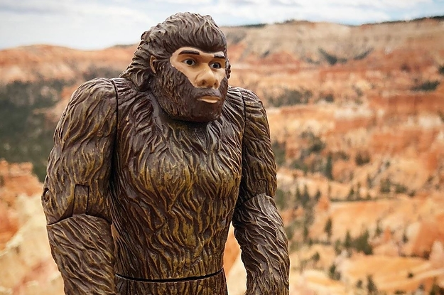 28 Products Anyone Who's Just Trying To Find Bigfoot Will Adore
