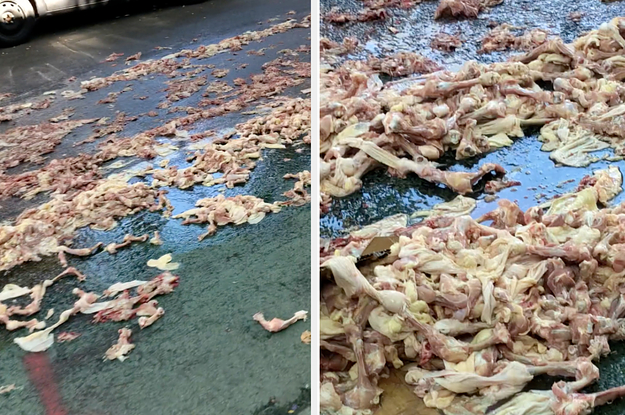 A Street In Brooklyn Was Covered In Raw Chicken