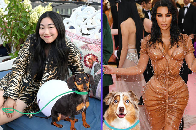 """Vote """"Yes"""" Or """"No"""" On Whether You'd Let These Celebs Watch Your Dog"""
