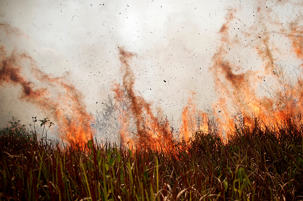 29 Products That Just Might Help Save Your Marriage