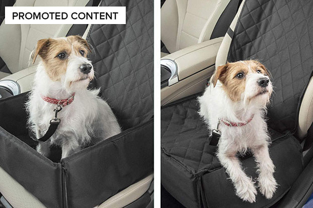 18 Seriously Helpful Products Dog Owners Need To Know About