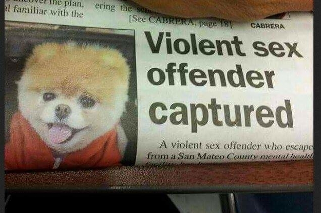 17 Articles That Really Should've Considered A Different Layout
