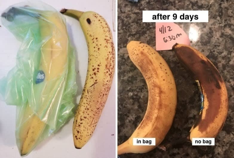Reviewer images showing the drastic difference of bananas placed in the bags vs. those left out. The ones in the bag stay riper for longer and have noticeable less brown spots.