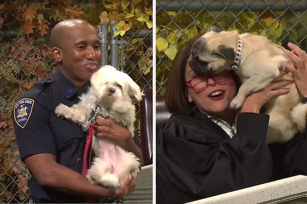 "The Dogs In This ""SNL"" Sketch Kept Making The Cast Break Character And It's Adorable"
