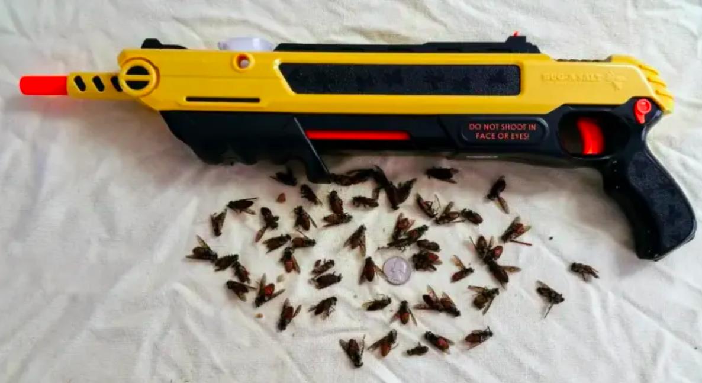 Reviewer showing dozens of dead bugs by salt gun