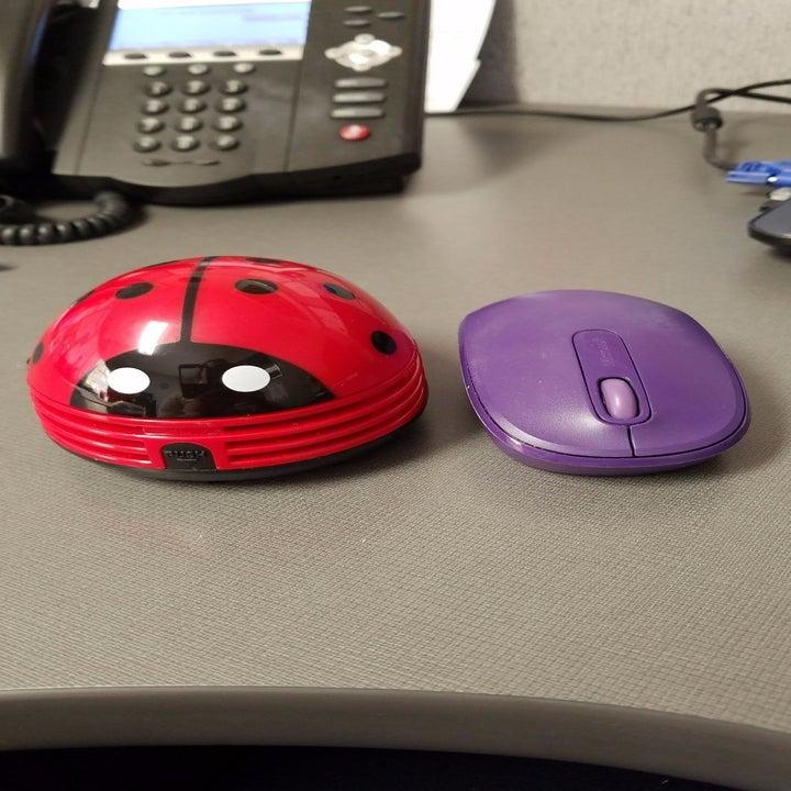 red ladybug-shaped vacuum