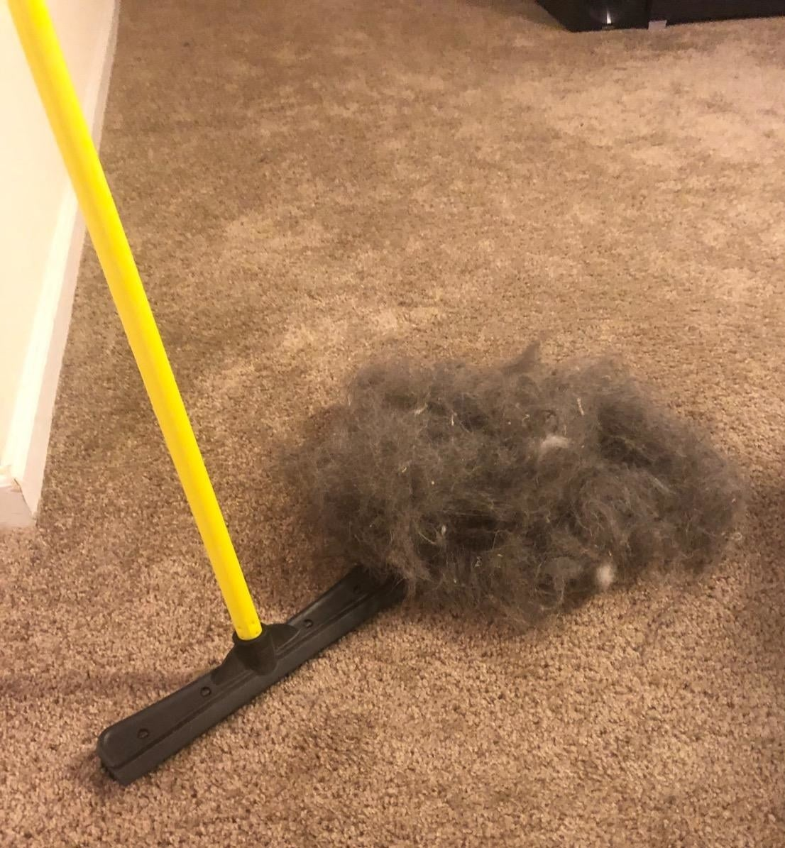 A reviewer photo of the combination broom and squeegee sitting on carpet next to a large pile of hair