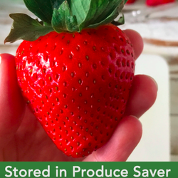 A BuzzFeed editor's photo of a perfectly fresh strawberry kept in the produce-saving container