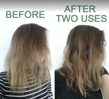 BuzzFeed editor's before and after of dry hair before using product, then silky hair after using product