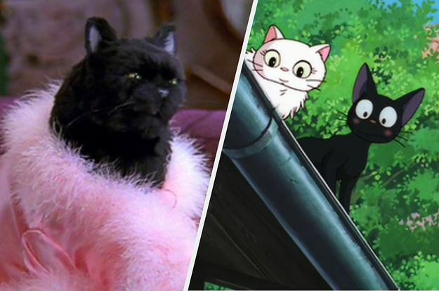 Which Fictional Black Cat Matches Your ...