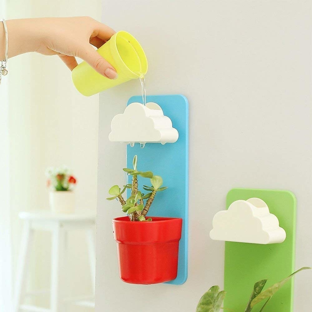 Teeny succulent mounted planter with cloud water holder on top