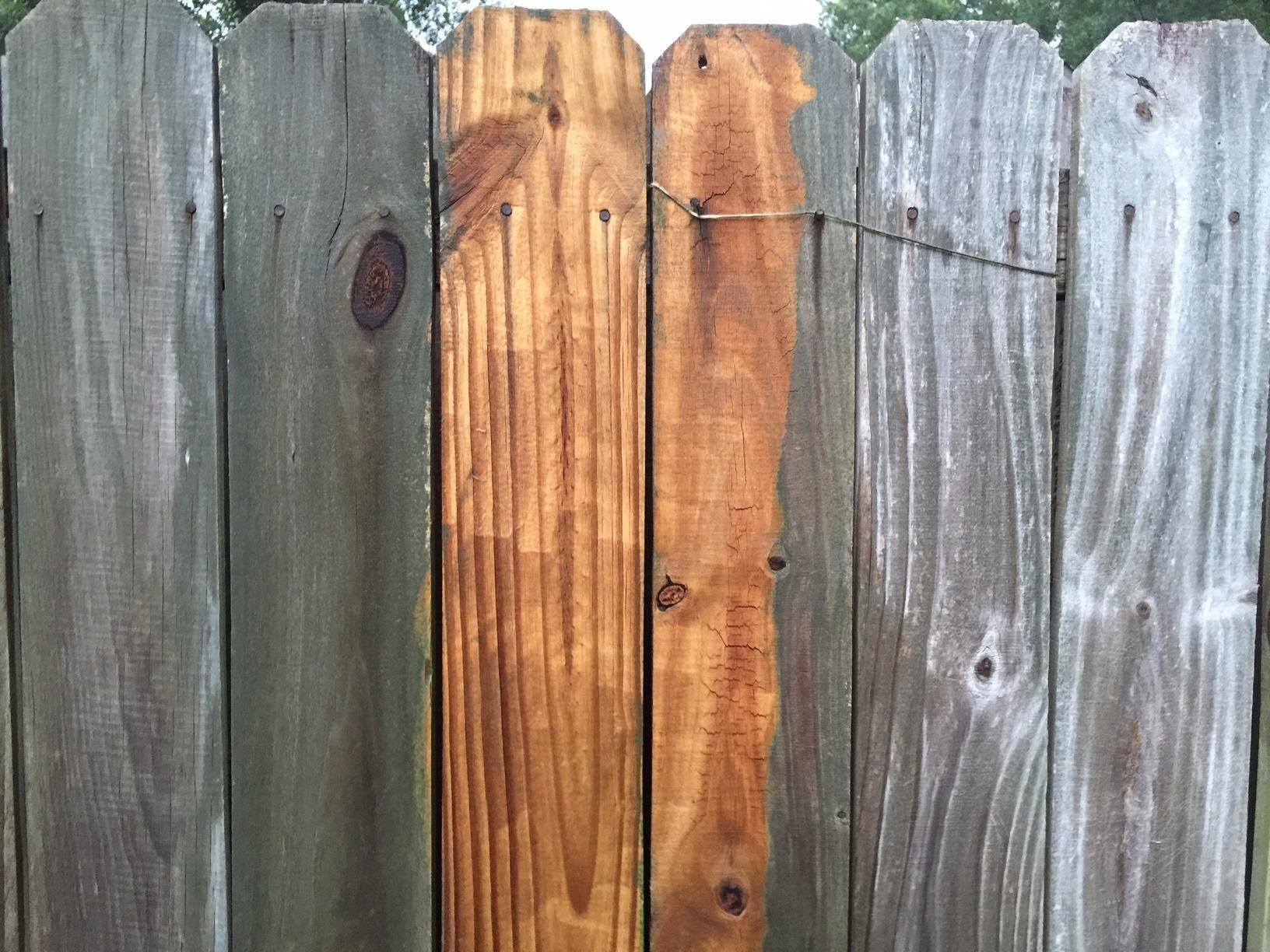 reviewer's photo of their dirty, discolored wooden fence compared to a strip of clean wood where they used the pressure washer