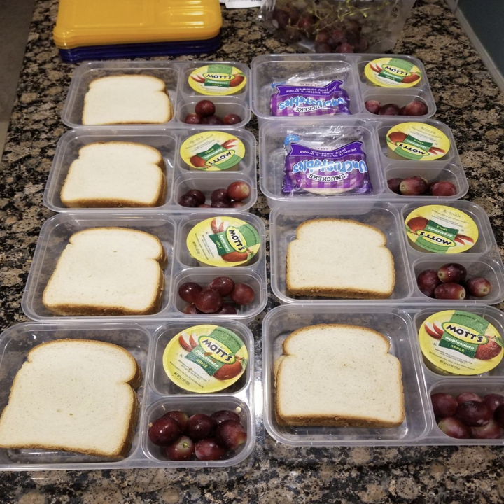 reviewer image of boxes spread out filled up with same meal