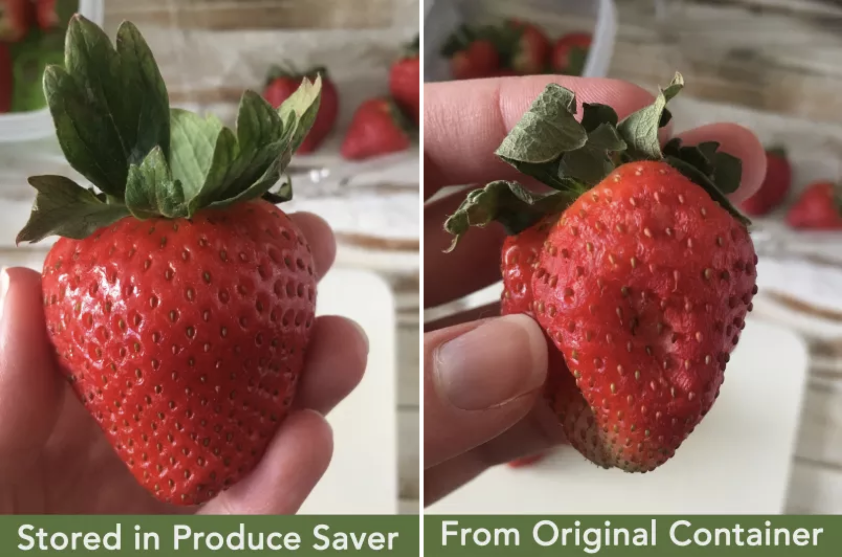 "BuzzFeed Editor Natalie Brown holding fresh strawberry labeled ""stored in produce saver"" and on the left, a bruised strawberry labeled ""from original container"""