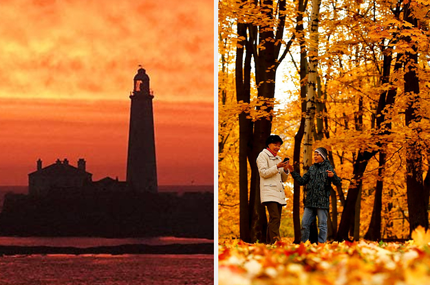 These Pictures Show The Breathtaking Beauty Of Autumn Around The World