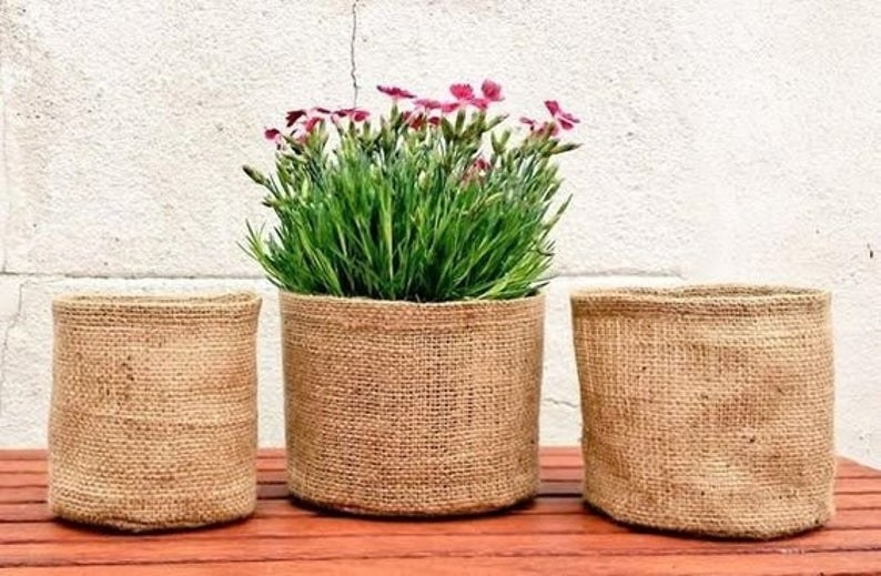 three round gardening pots made of burlap